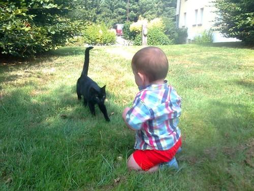 MILO rencontre avec petit chat noir 001.jpg